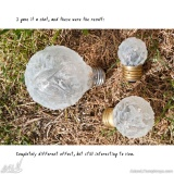 I Collect Light Bulbs 05