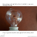 I Collect Light Bulbs 06